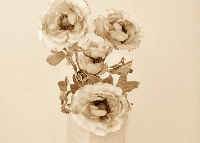 Photo Greeting Card featuring the photograph Old Time Brown Toned Peonies by Marsha Heiken