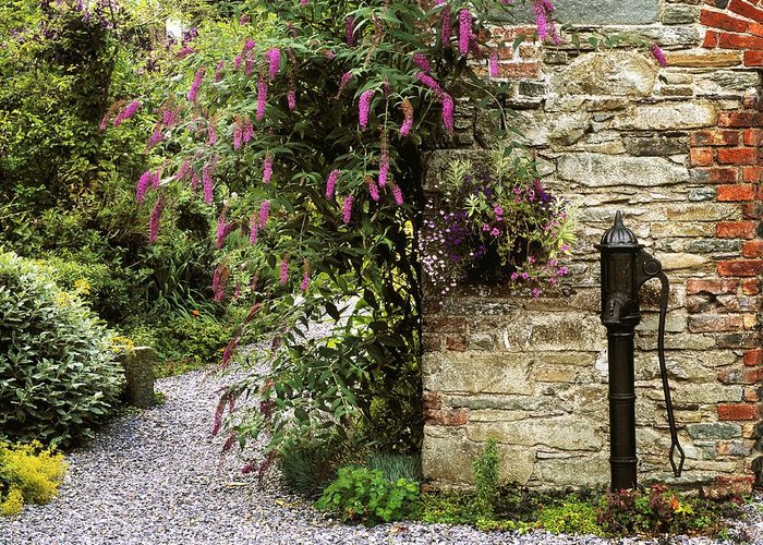 Color Image Greeting Card featuring the photograph Old Water Pump, Ram House Garden, Co by The Irish Image Collection