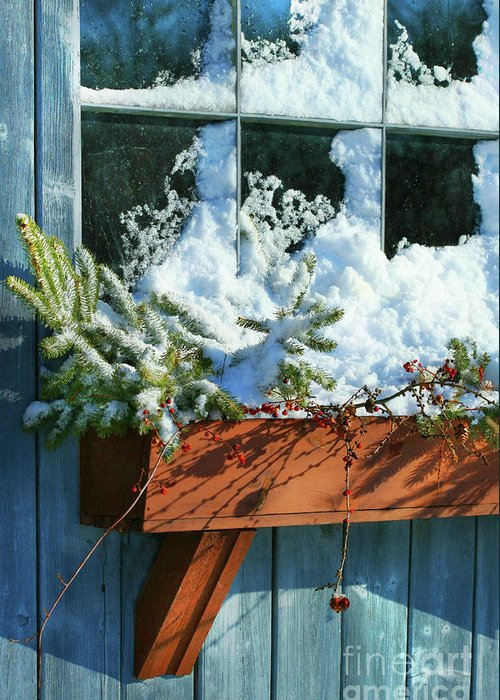 Branch Greeting Card featuring the photograph Old Window In Winter by Sandra Cunningham