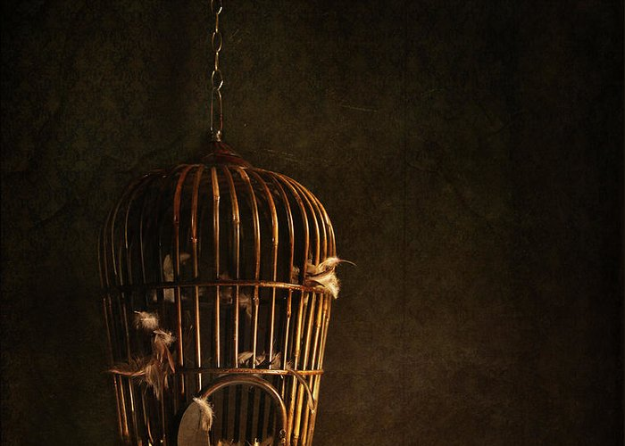 Atmospheric Greeting Card featuring the photograph Old Wooden Bird Cage With Feathers by Sandra Cunningham