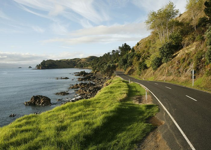 Day Greeting Card featuring the photograph On The Road Around The Coromandel by Dawn Kish