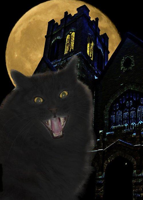 Black Cat Greeting Card featuring the photograph One Dark Halloween Night by Shane Bechler