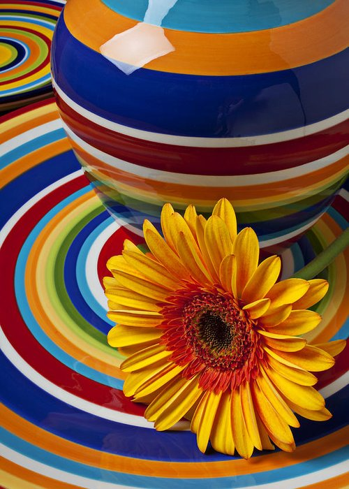 Yellow Greeting Card featuring the photograph Orange Daisy With Plate And Vase by Garry Gay