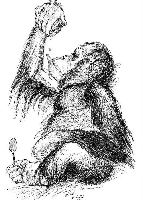 Orangutan Greeting Card featuring the photograph Orangutan, 19th Century by