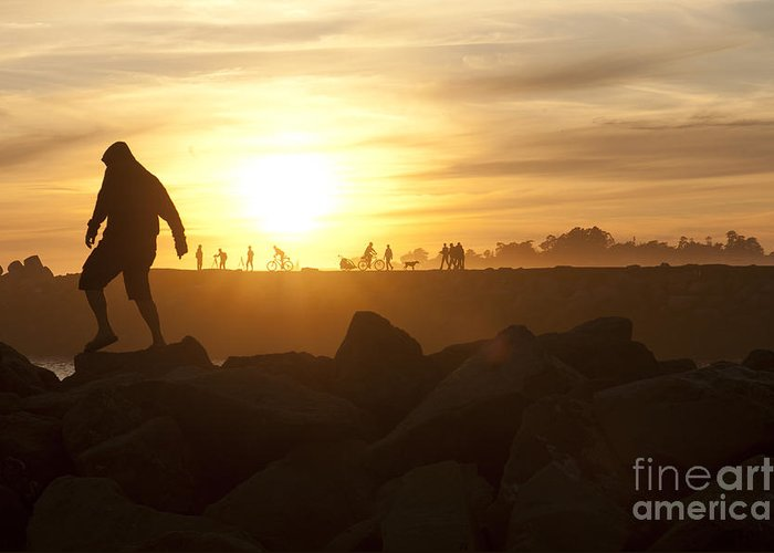 Silhouette Greeting Card featuring the photograph Ordinary Day Extraordinary Life by Artist and Photographer Laura Wrede