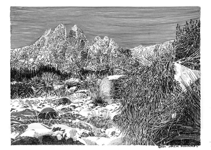Framed Prints And Note Cards Of Ink Drawings Of Scenic Southern New Mexico. Framed Canvas Prints Of Pen And Ink Images Of Southern New Mexico. Black And White Art Of Southern New Mexico Greeting Card featuring the painting Organ Mountain Wintertime by Jack Pumphrey