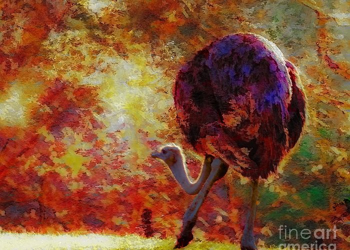 African Greeting Card featuring the photograph Ostrich II by Arne Hansen