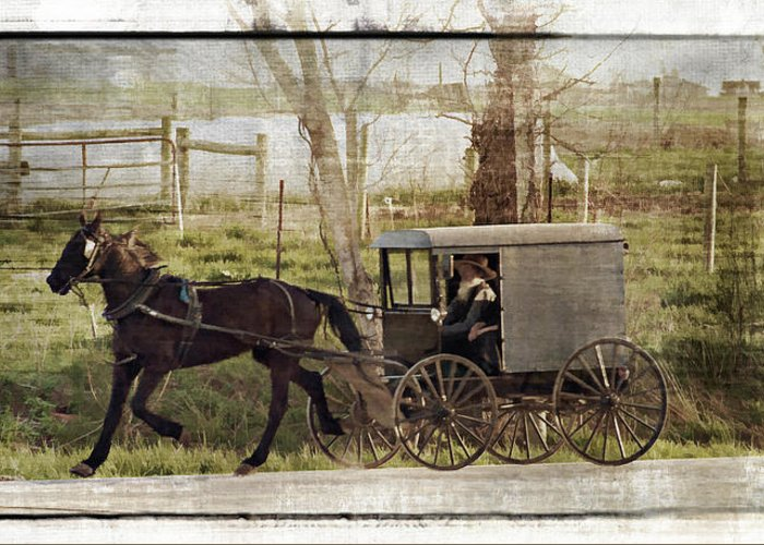 Amish Greeting Card featuring the photograph Out For A Ride by Kathy Jennings