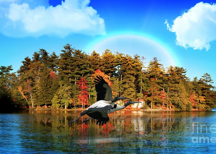 Rainbow Greeting Card featuring the photograph Over The Rainbow by Mark Ashkenazi