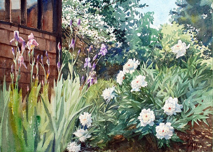 Peter Sit Watercolor Greeting Card featuring the painting Oxenden Peonies by Peter Sit