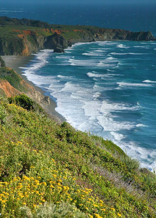 Pacific Ocean Greeting Card featuring the photograph Pacific Coast Shoreline I by Steven Ainsworth