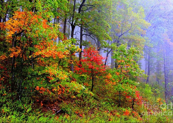 Fall Greeting Card featuring the photograph Painted Autumn by Carolyn Wright