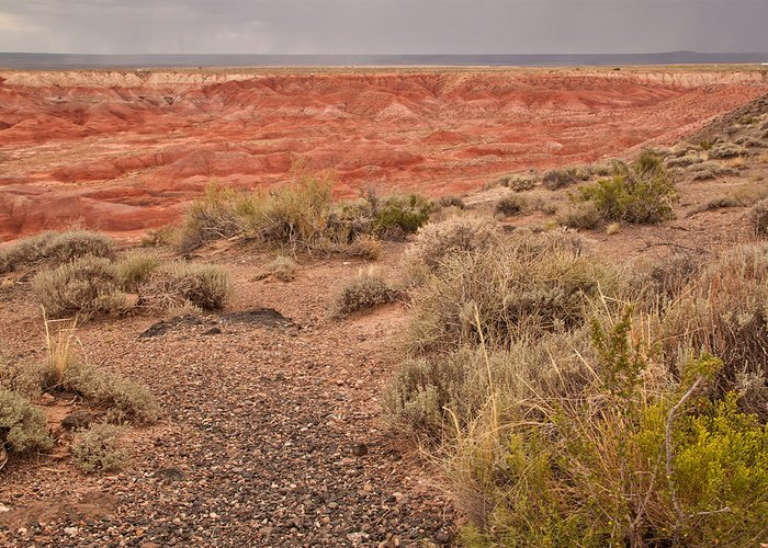 Painted Desert Greeting Card featuring the photograph Painted Desert 3 by Susan OBrien