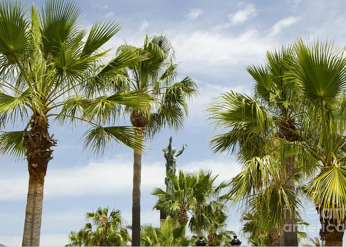Travel Greeting Card featuring the photograph Palm Trees In Spain by Perry Van Munster