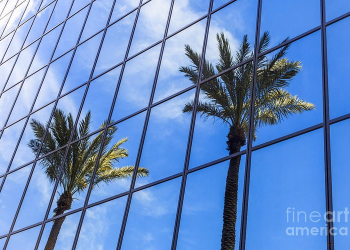 America Greeting Card featuring the photograph Palm Trees Reflection On Glass Office Building by Paul Velgos