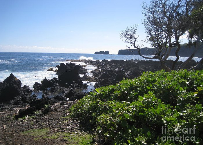 Maui Greeting Card featuring the photograph Papillon Rock by Terry Hunt