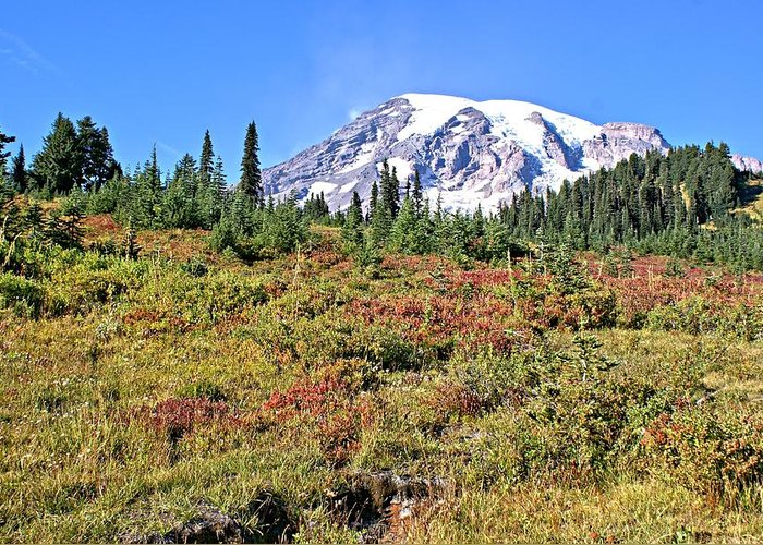 Mt. Greeting Card featuring the photograph Paradise In Fall On Mt. Rainier 2 by Rob Green