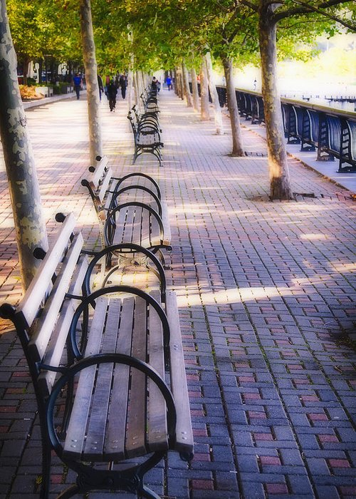 Benches Greeting Card featuring the photograph Park Benches In Hoboken by George Oze