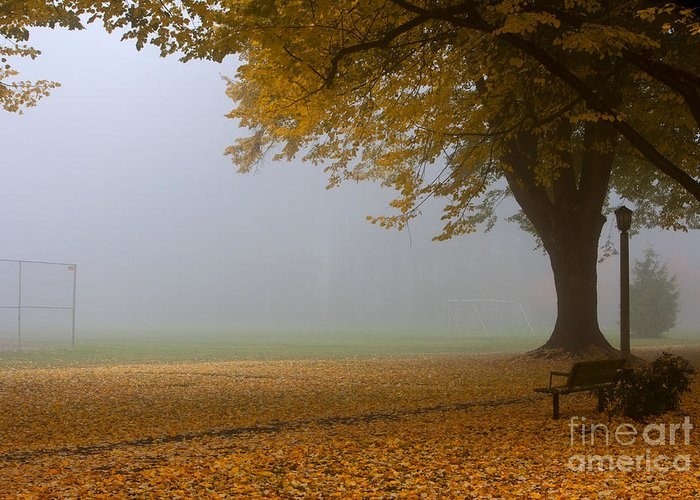 Autumn Greeting Card featuring the photograph Park In Autumn by David Buffington