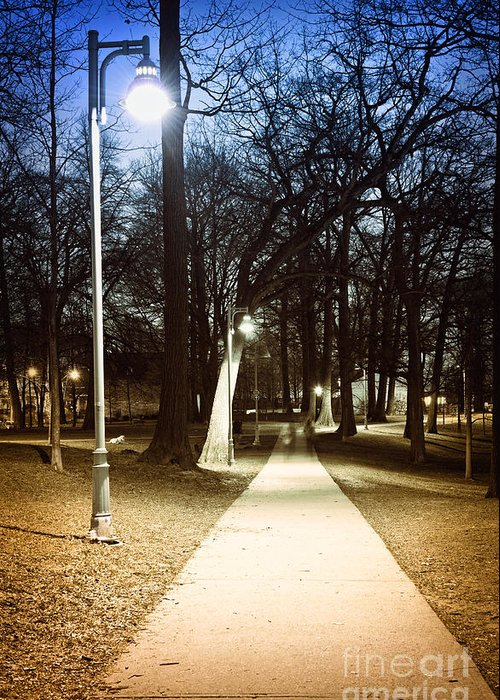 Park Greeting Card featuring the photograph Park Path At Night by Elena Elisseeva