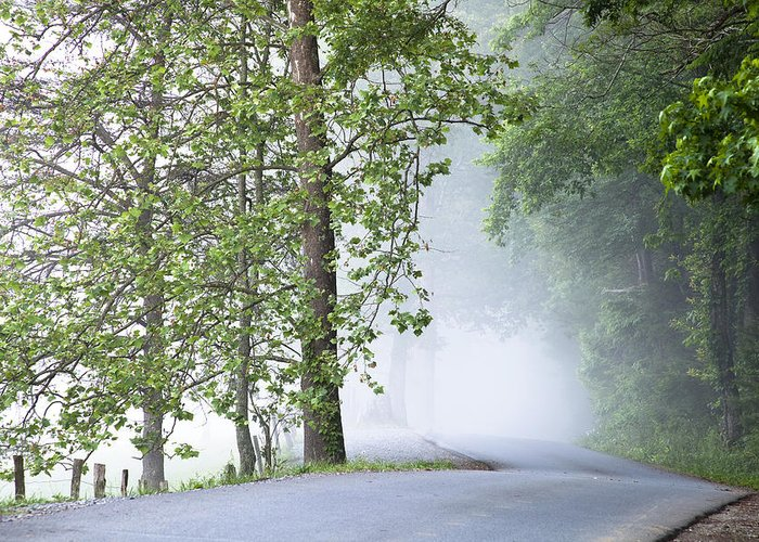 Cades Cove Greeting Card featuring the photograph Path Into The Fog by Andrew Soundarajan