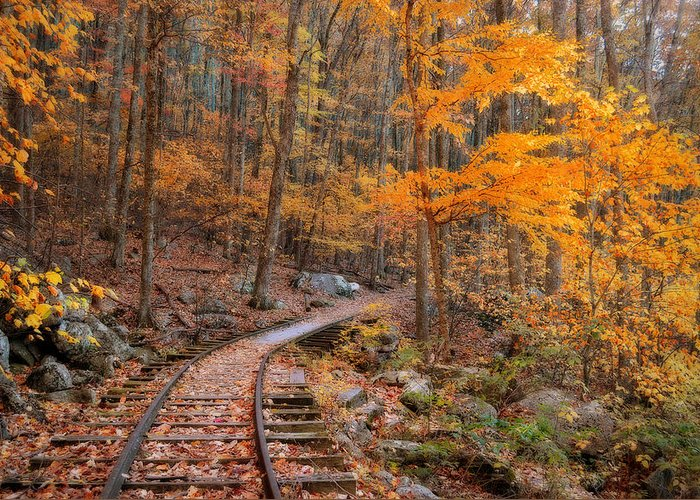 Autumn Greeting Card featuring the photograph Peaceful Pathway Series 2 by Kathy Jennings
