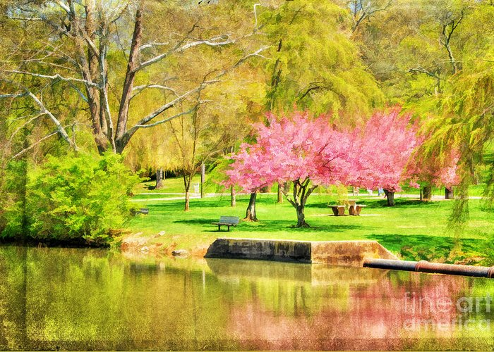 Asian Greeting Card featuring the photograph Peaceful Spring II by Darren Fisher