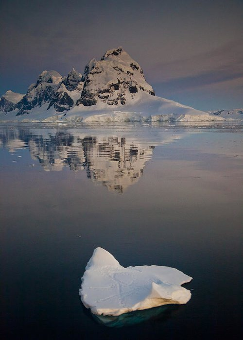 00479586 Greeting Card featuring the photograph Peak On Wiencke Island Antarctic by Colin Monteath