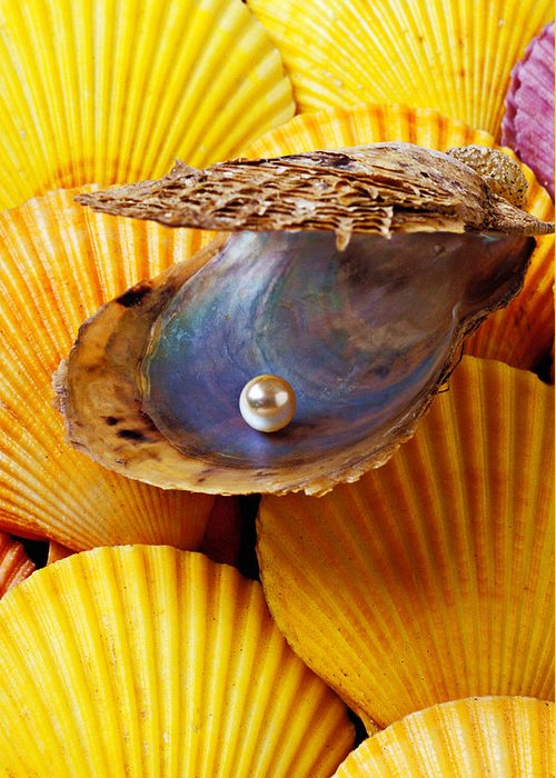 Pearl Greeting Card featuring the photograph Pearl In Oyster Shell by Garry Gay