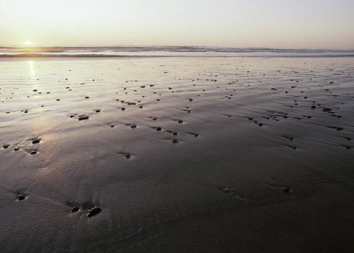 Ocean Greeting Card featuring the photograph Pebbles Form Patterns On A Sandy Ocean by Jason Edwards