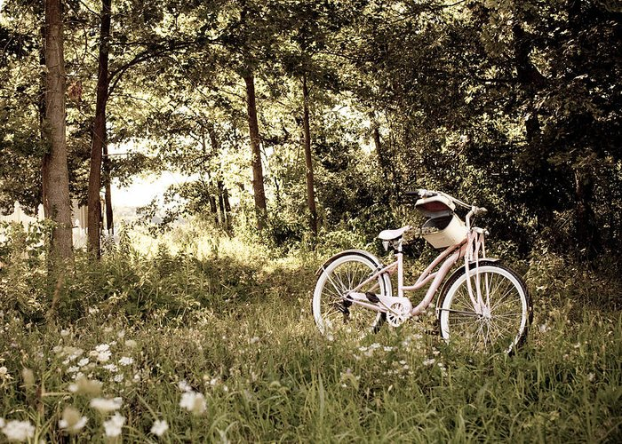 Serenity Greeting Card featuring the photograph Pedaling To The Past by Rebecca Harley