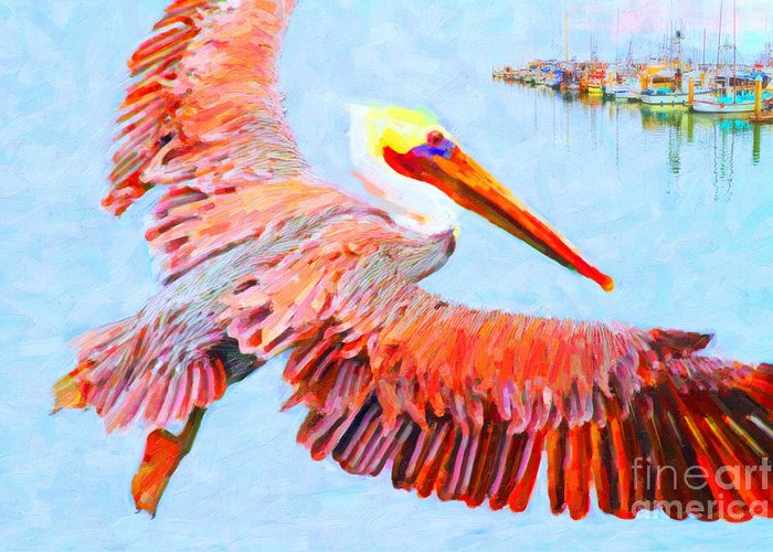 Animal Greeting Card featuring the photograph Pelican Flying Back To The Docks by Wingsdomain Art and Photography
