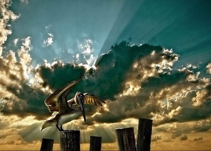 Pelican Greeting Card featuring the photograph Pelican Sky by Meirion Matthias