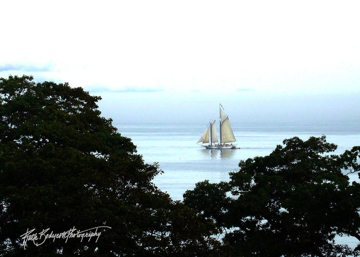 Landscape Greeting Card featuring the photograph Penobscot Bay Sailing by Ruth Bodycott
