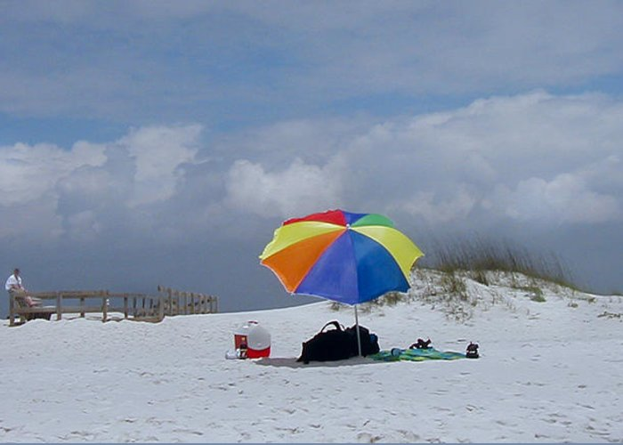 Florida Greeting Card featuring the photograph Pensacola Umbrella by Ed Golden