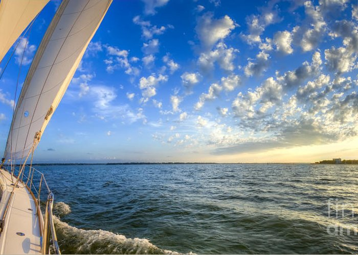 Perfect Evening Sailing On The Charleston Harbor Greeting Card featuring the photograph Perfect Evening Sailing On The Charleston Harbor by Dustin K Ryan