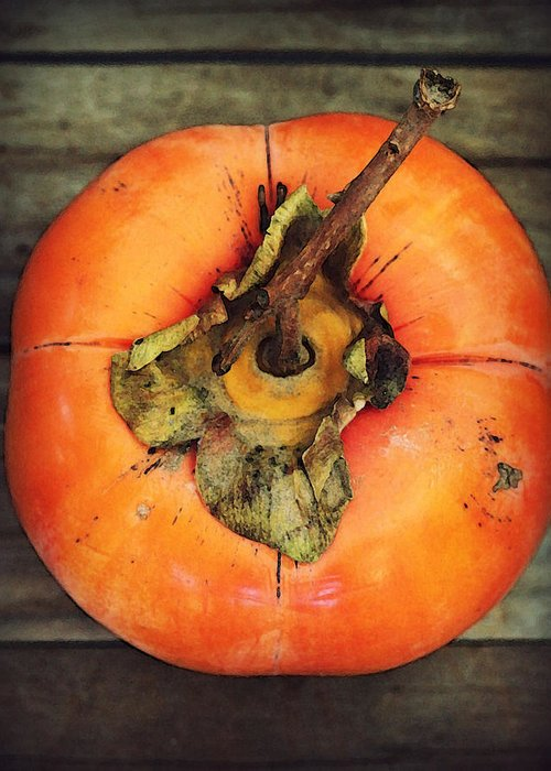 Persimmon Greeting Card featuring the photograph Persimmon IIi by Amy Neal