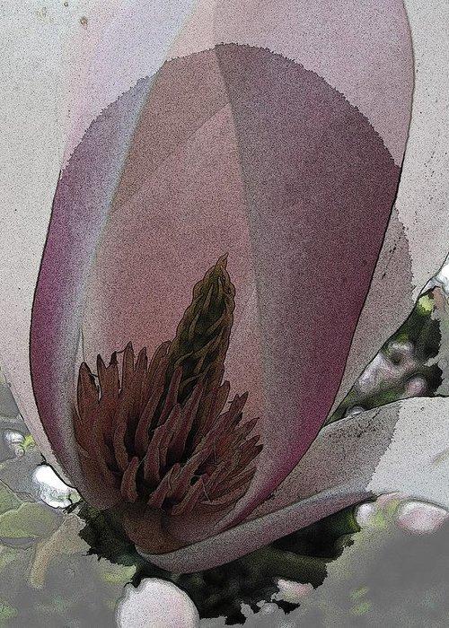 Petal Greeting Card featuring the digital art Petal Prose by Tim Allen