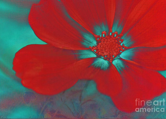 Red Greeting Card featuring the photograph Petaline - T23b2 by Variance Collections