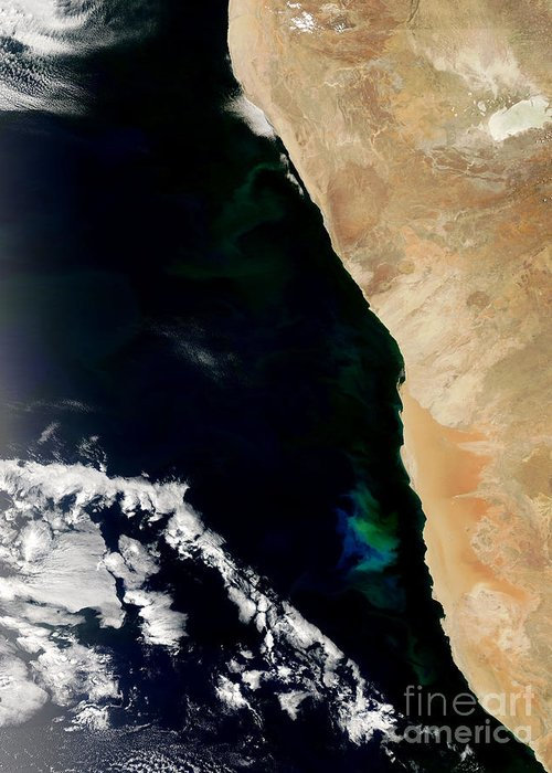 Phytoplankton Greeting Card featuring the photograph Phytoplankton Bloom Off Nambia by Nasa