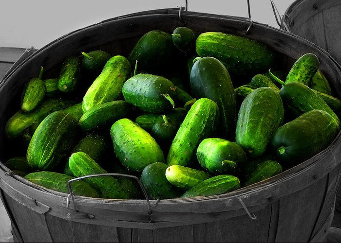 Food And Beverage Photograph Greeting Card featuring the photograph Pickling Cucumbers by Ms Judi