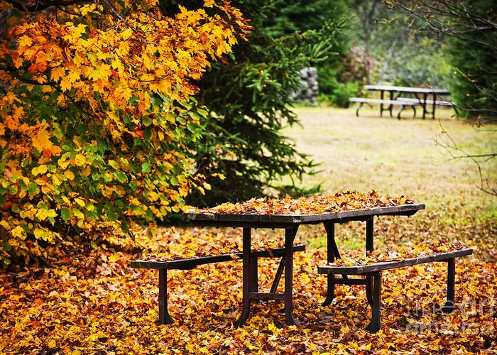Picnic Table Greeting Card featuring the photograph Picnic Table With Autumn Leaves by Elena Elisseeva