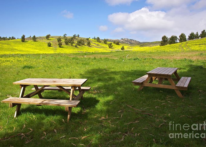 Beams Greeting Card featuring the photograph Picnic Tables by Carlos Caetano