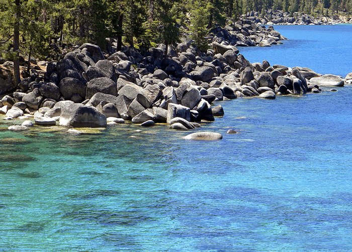 Lake Tahoe Greeting Card featuring the photograph Pines Boulders And Crystal Waters Of Lake Tahoe by Frank Wilson