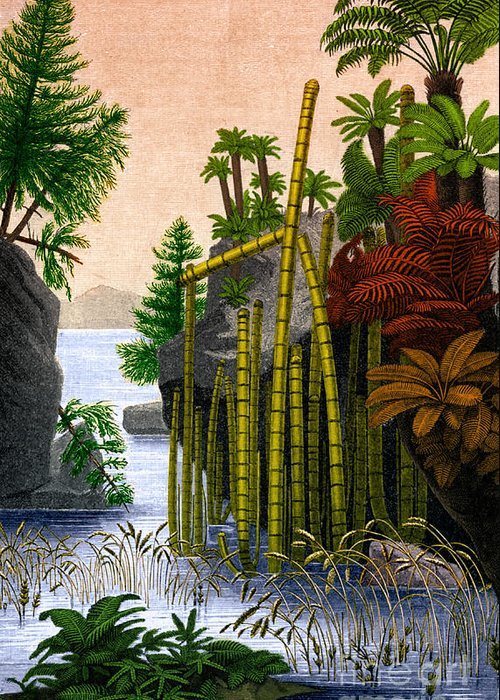 Science Greeting Card featuring the photograph Plants Of The Triassic Period by Science Source