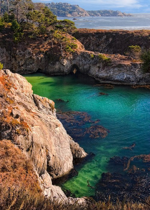 Point Lobos State Reserve Greeting Card featuring the photograph Point Lobos State Reserve California by Utah Images