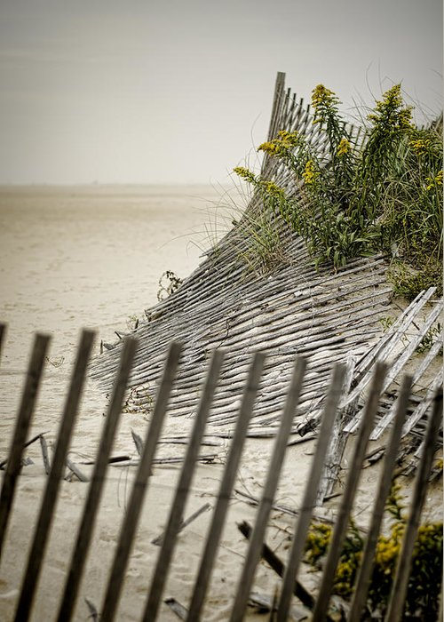 Beach Greeting Card featuring the photograph Point Pleasant Beach by Heather Applegate