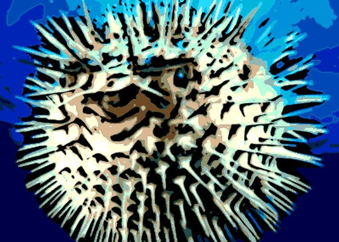 Puffer Fish Greeting Card featuring the photograph Pointed Opinion by George Pedro