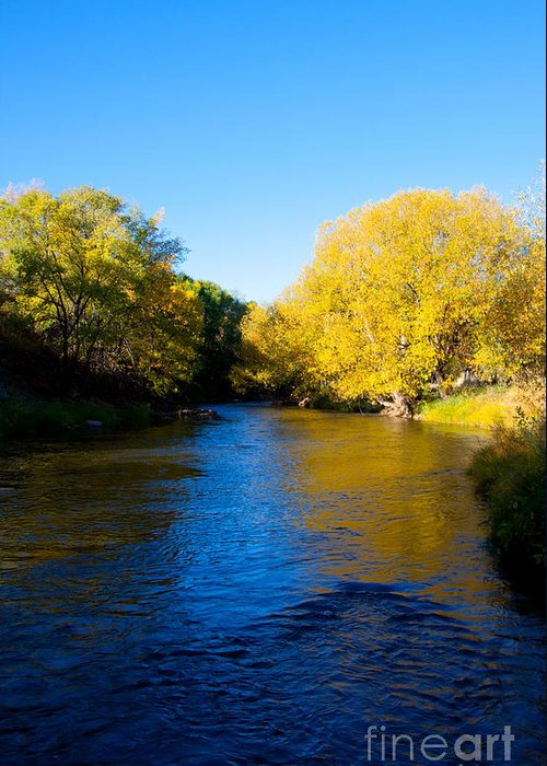 Colorado Greeting Card featuring the photograph Poudre River by Dana Kern