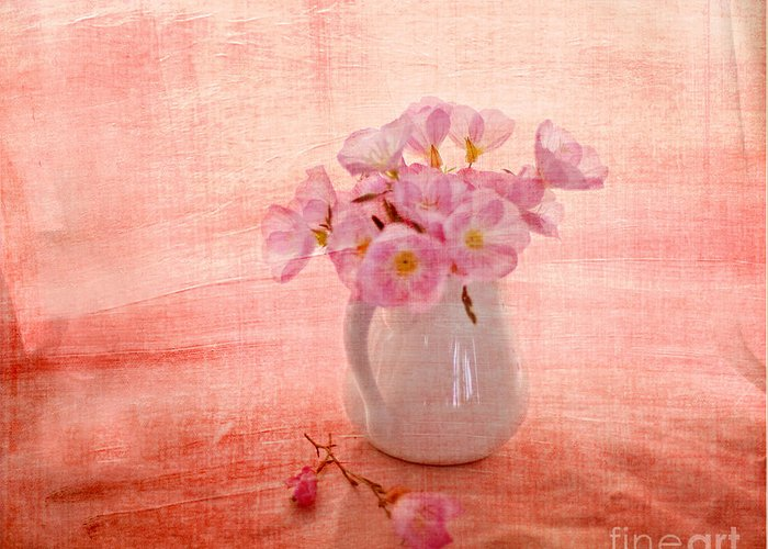 Pink Primroses Greeting Card featuring the photograph Primroses D'orange by Linde Townsend